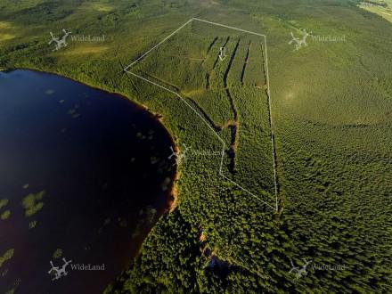 Спутник ДНП Коттеджный поселок